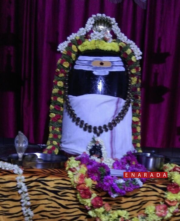 Snake appeared in a Shiva temple in Bidadi on 4-4-2015.