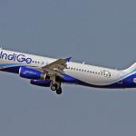 indigo-airlines102