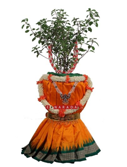 People are gearing up for decorating Holy Basil plant for Tulasi puja or Mini Deepavali
